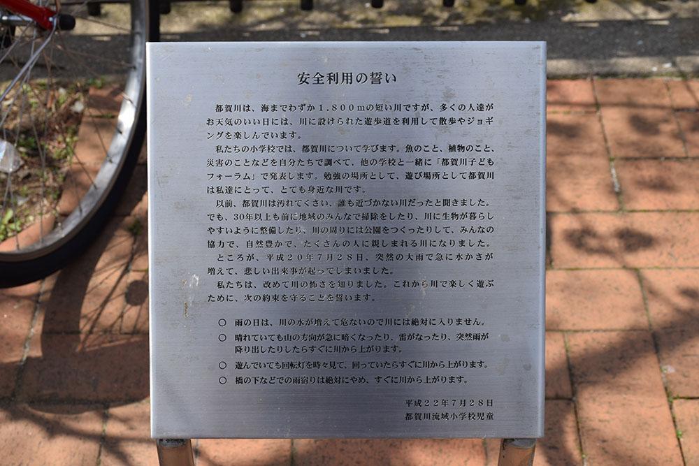 都賀川公園の桜の木の下で思う。_e0158128_17504795.jpg