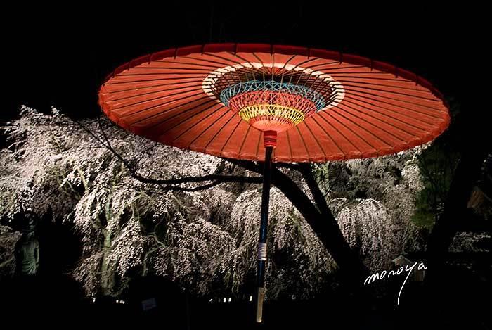 夜桜見物_c0085877_07265555.jpg