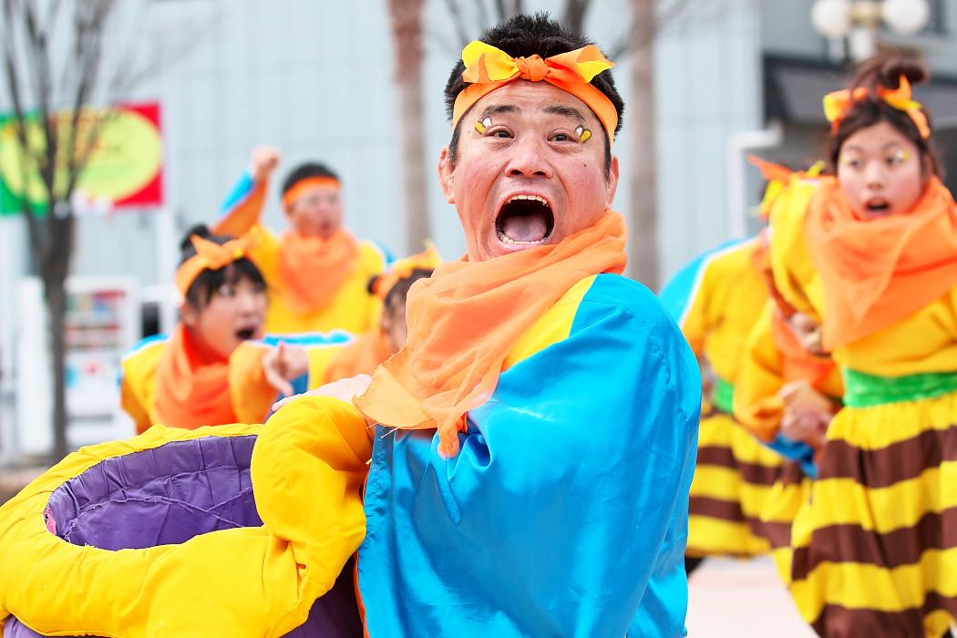 大阪芸大よさこい×結び・歓喜団@がんこ祭(浜よさ)2015_c0187584_812796.jpg