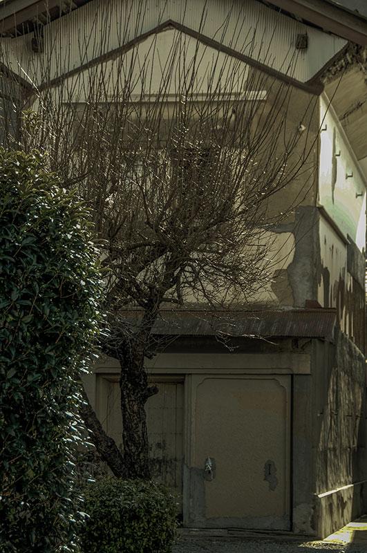 記憶の残像-722 埼玉県秩父市 小鹿野-3_f0215695_1131351.jpg