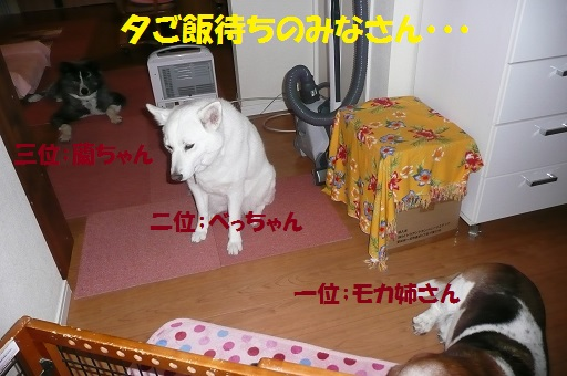 f0121712_6275054.jpg