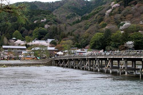 嵐山満開 2015さくら情報 20_e0048413_16353785.jpg