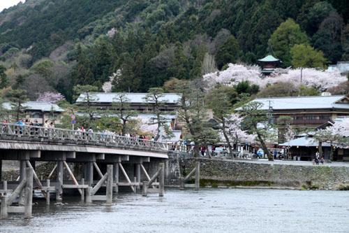 嵐山満開 2015さくら情報 20_e0048413_163653.jpg
