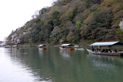 嵐山満開 2015さくら情報 20_e0048413_16371466.jpg
