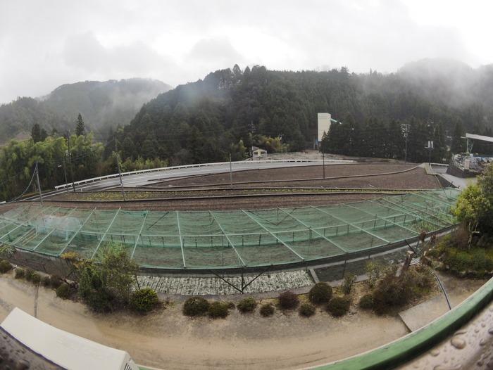 雨に霧_c0116915_23101938.jpg