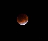 4月4日   「桜・満月・皆既月食」_b0211926_16250890.jpg