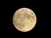 4月4日   「桜・満月・皆既月食」_b0211926_16504116.jpg