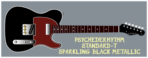 「Sparkling Black MetallicのStandard-T」を製作します。_e0053731_16541167.jpg
