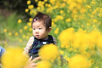 初めての桜_c0245240_10341827.jpg