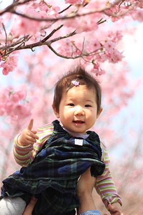 初めての桜_c0245240_10341856.jpg