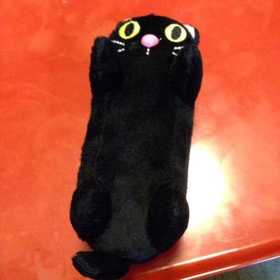 お猫グッズと大阪都構想_c0185356_17381279.jpg