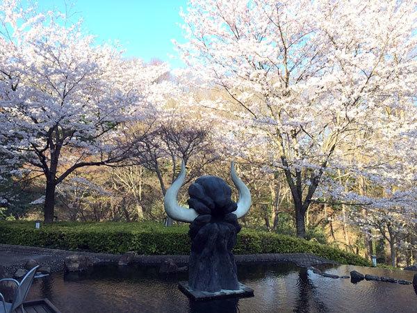 今日もお花見散歩!_c0110361_14372016.jpg