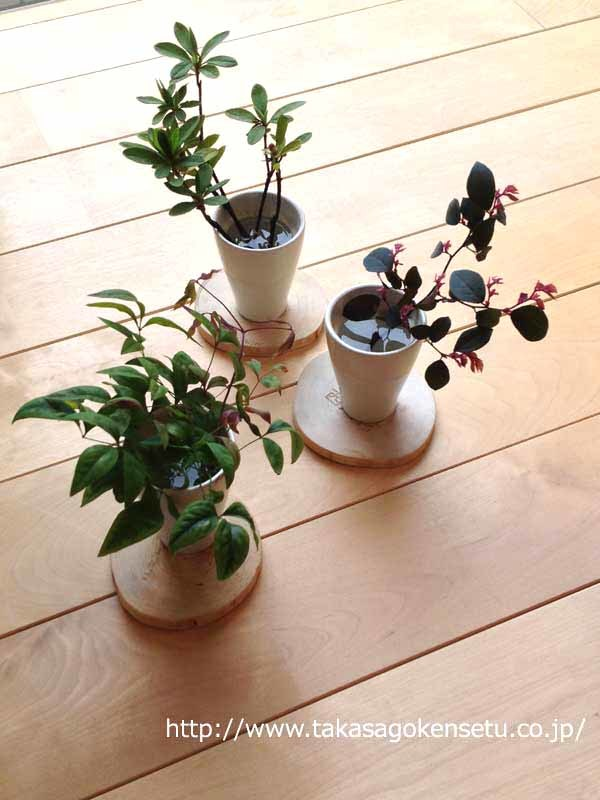 庭の木々を室内に飾って。_f0144724_14001830.jpg
