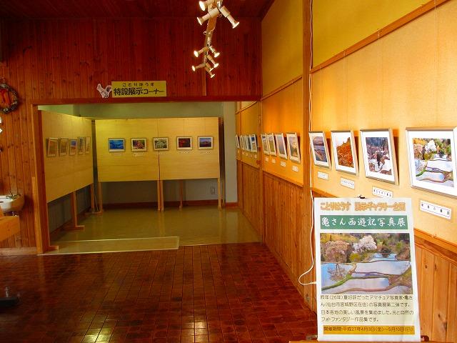 亀さんの写真展が始まりました_b0189727_16315732.jpg