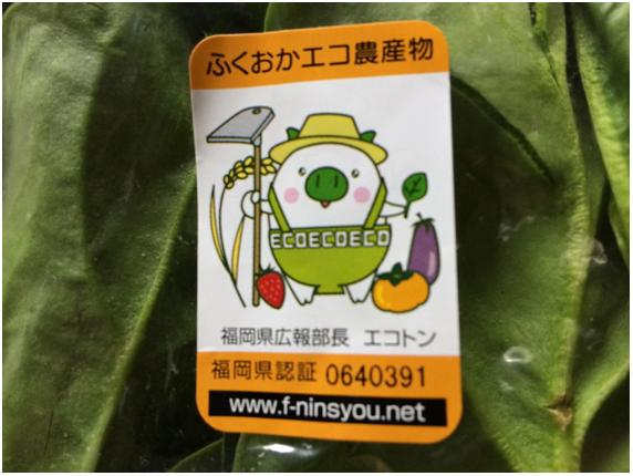 ふくおかエコ農産物交流会 in 福津・宗像_b0206253_12495430.png