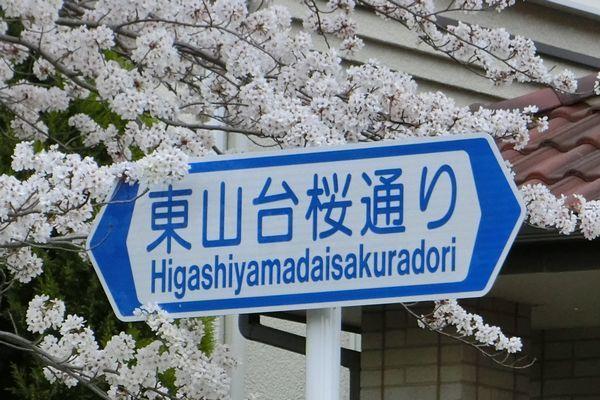 f0007956_17394602.jpg