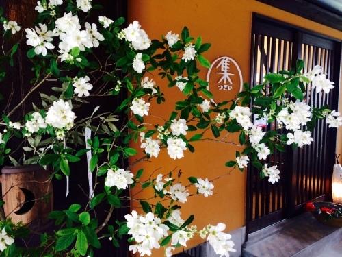 春爛漫♪_e0251361_12080126.jpg