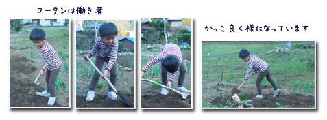 孫と畑へ_c0051105_23494550.jpg