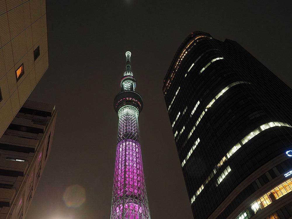 東京スカイツリーと桜_f0324026_4373954.jpg