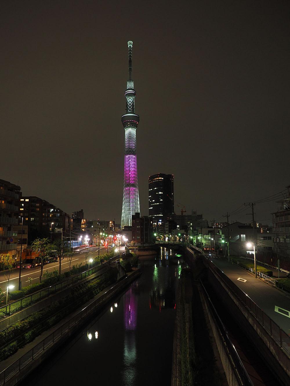 東京スカイツリーと桜_f0324026_4452112.jpg