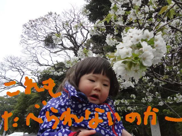 f0148927_2235857.jpg