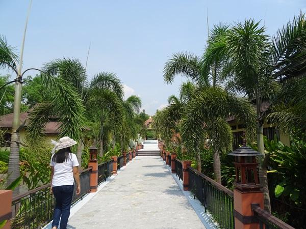 最近の私達☆チェンマイ,タイ_e0182138_14194265.jpg