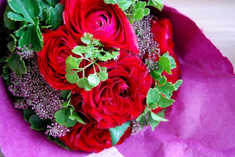 「願わくば・・・」桜とお祝い会を。_b0165872_16385177.jpg