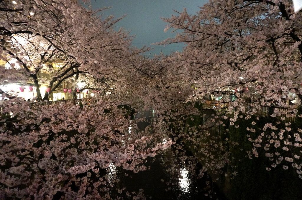 恵比寿のAMPELMANN Cafe Tokio_c0180686_11484273.jpg