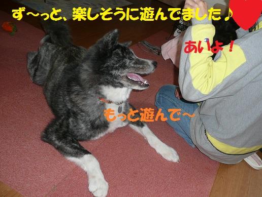 f0121712_16114214.jpg