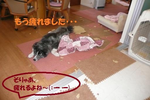 f0121712_16363747.jpg