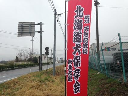 『(社) 天然記念物 北海道犬 保存会 東北大会』_f0259324_23215948.jpg