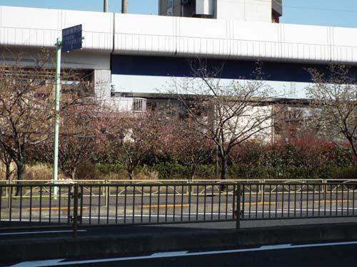 ぐるっとパスNo.15 三井記念美と天理ギャラリーまで見たこと_f0211178_9363534.jpg