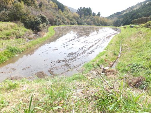 水田の水確保と整備_d0251679_21361393.jpg