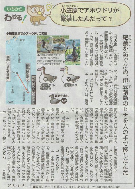 2015年4月6日 乙戸沼公園さくら その9_d0249595_773479.jpg