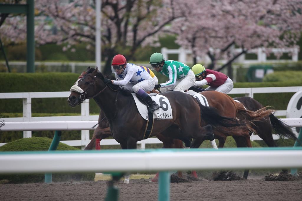 2015年4月5日 産経大阪杯(GⅡ)_f0204898_7513662.jpg