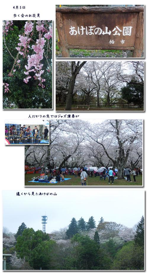 柏 あけぼの山公園へ_c0051105_1605782.jpg