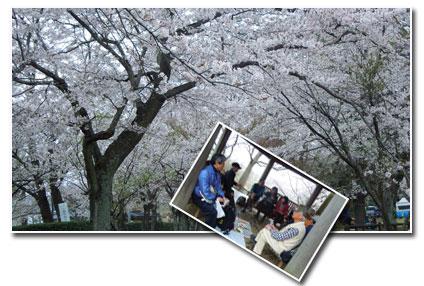 柏 あけぼの山公園へ_c0051105_163819.jpg