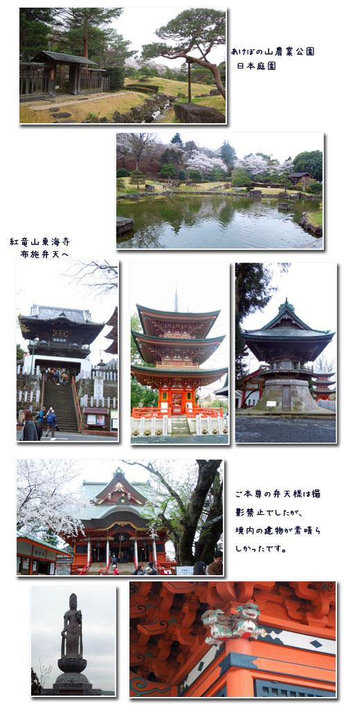 柏 あけぼの山公園へ_c0051105_1648616.jpg