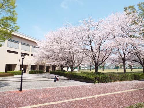 筑波学院大学 新入生スクエアダンス体験 (4月6日)_b0337729_22295136.jpg