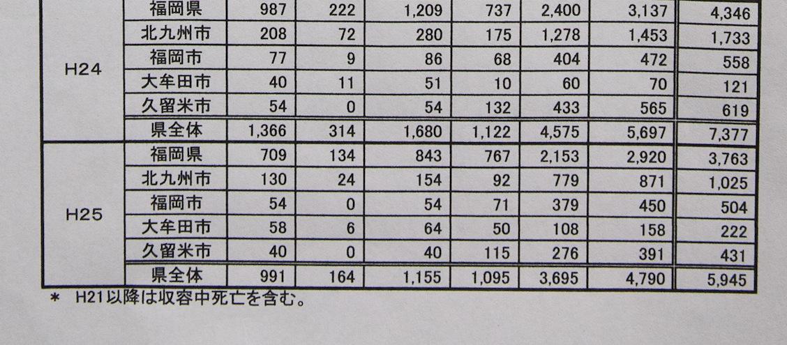 福岡県における犬猫殺処分_d0073743_13472246.jpg