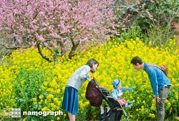 春色のクレヨン_a0165860_18521171.jpg