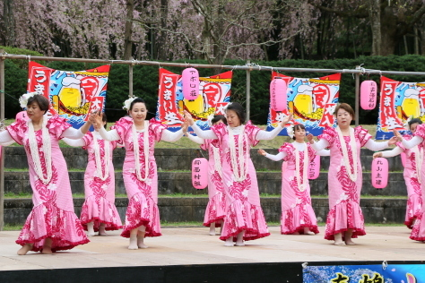 2015年 「しだれ桜の宴」_b0135882_20585214.jpg