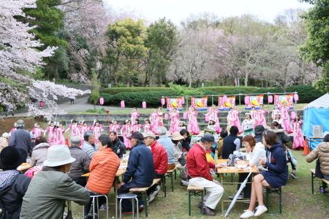 2015年 「しだれ桜の宴」_b0135882_21192918.jpg