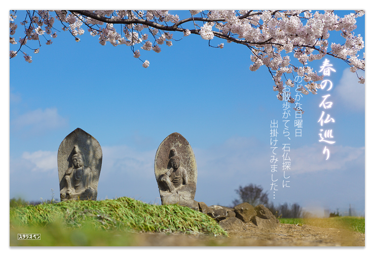 今年は どんな桜を撮りましたか?_c0210599_16273548.jpg
