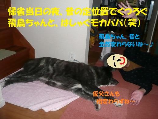 f0121712_15464329.jpg