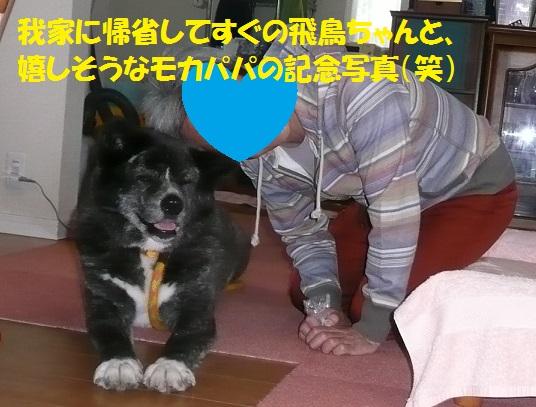 f0121712_15583236.jpg