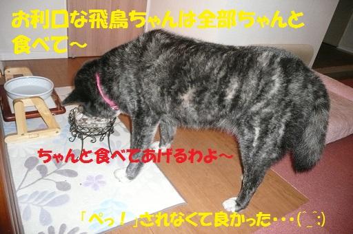 f0121712_16521032.jpg