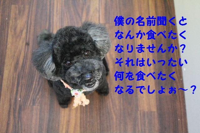 b0130018_2315160.jpg