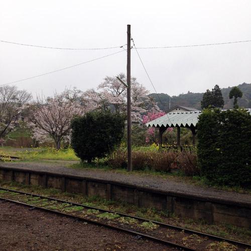 いすみ鉄道に乗りに行ってきました。_a0026127_18132397.jpg