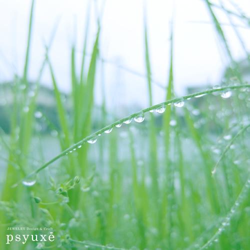 4月、雨が降る_e0131432_16241161.jpg